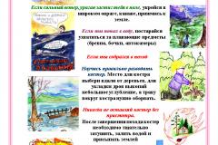 Pravila_povedeniya_na_prirode_dlya_detey_pamyatka_v_kartinkah_38_05153651